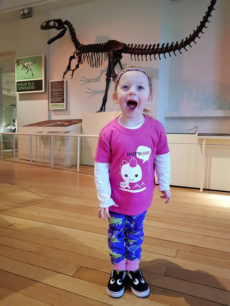 Dino Rawr at New Walk Museum