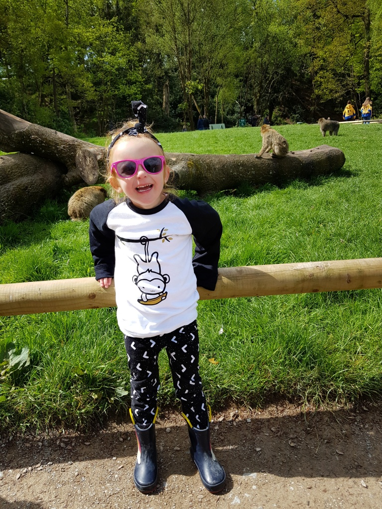 This little monkey loves Trentham Monkey Forest!