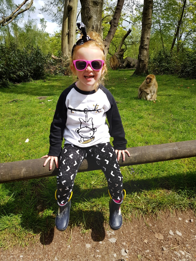 Monkeying around with this little monkey at Trentham Monkey Forest