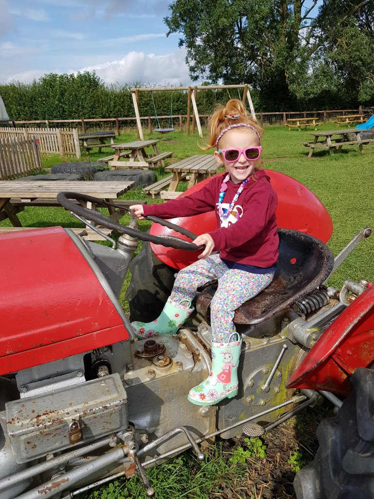 Fun at Mini Meadows Farm