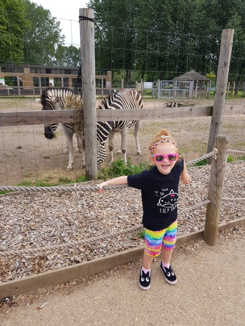 She has always loved the zebras!