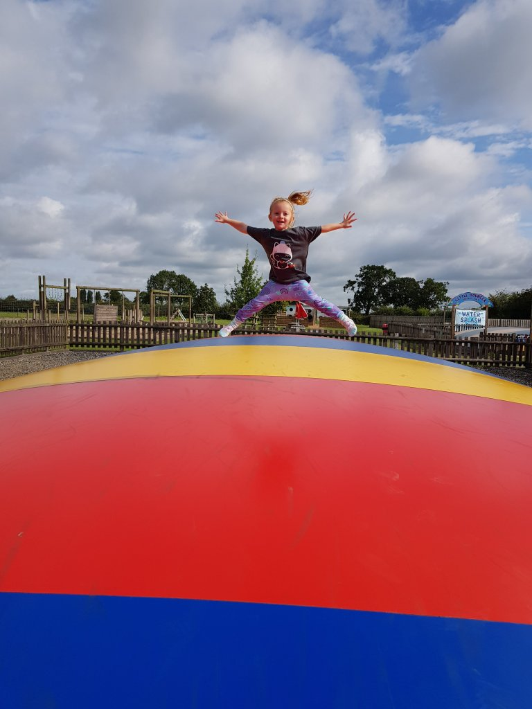 The jumping pillows at National Forest Adventure Farm