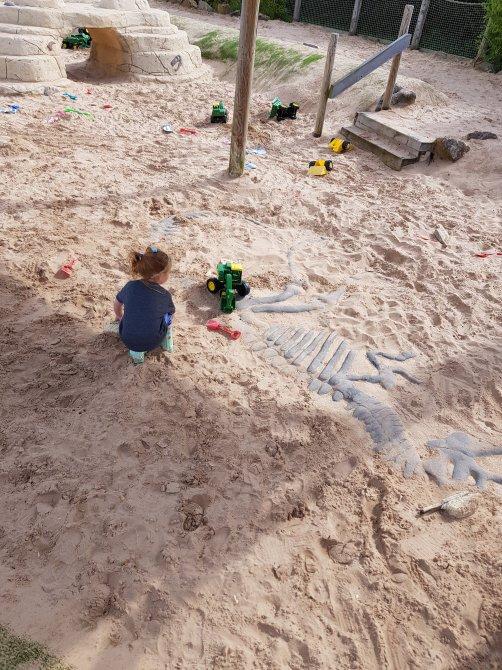 Jurassic area, uncovering dinosaur bones!
