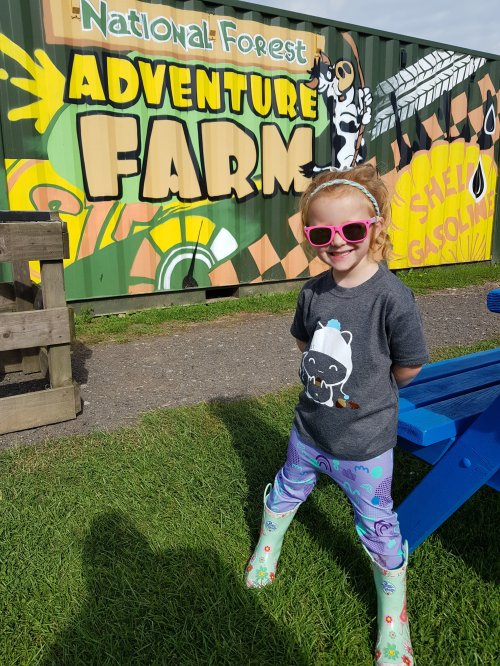 The National Forest Adventure Farm - a great day out for all the family