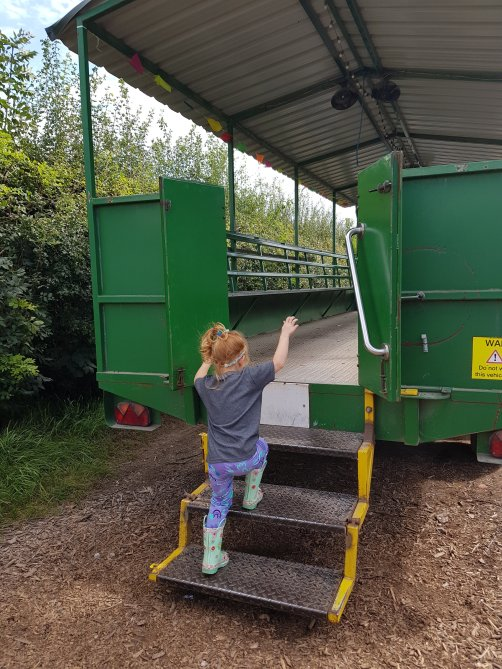 She loved looking for the scarecrows on the tractor ride