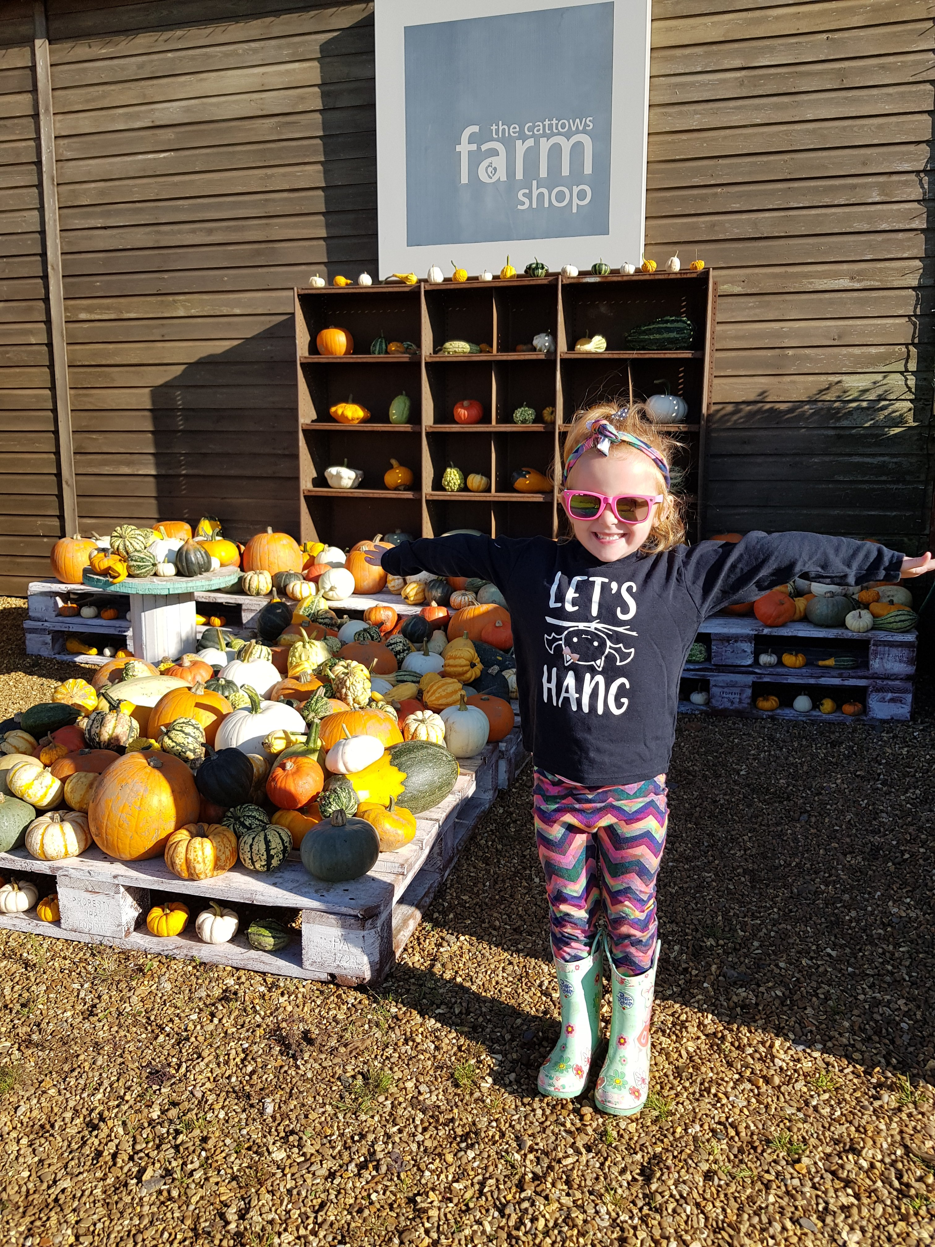 Cattows Farm has an amazing variety of pumpkins