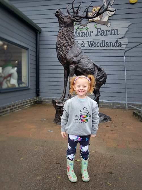 Manor Farm Park & Woodlands - A beautiful location for a Christmas adventure