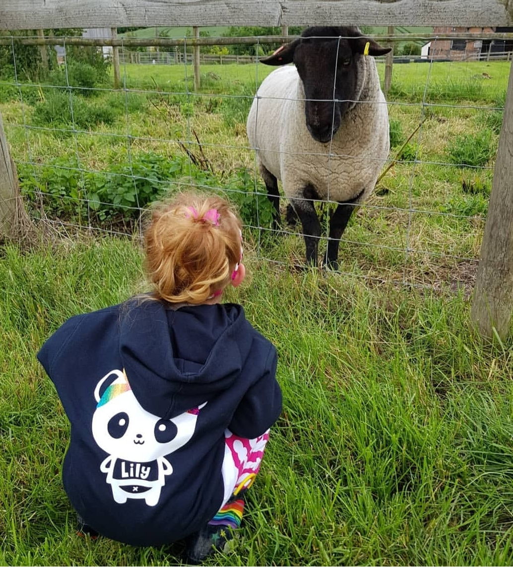 Situated on Nash End Farm, Lily loved the sheep!