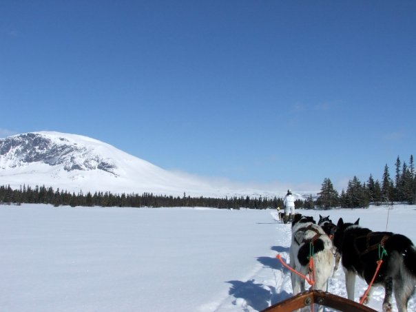 Husky-sledding across Norway in 2009. Take me to Finland in search of the Northern Lights!