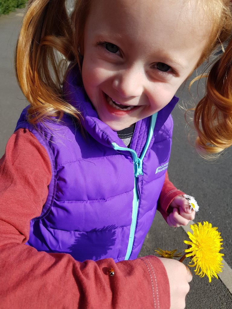 Daisies, dandelions and ladybirds. Nature is a fantastic school