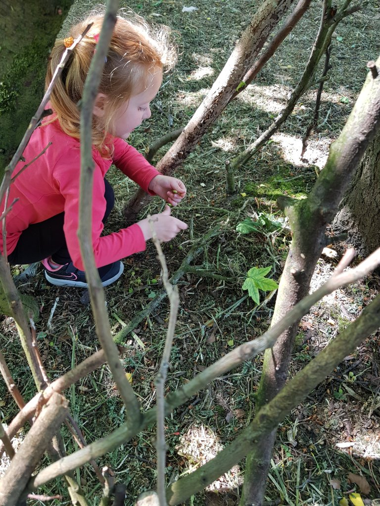 Den building and making nests in the trees thanks to the Little Trekkers #Trek25 inspiration