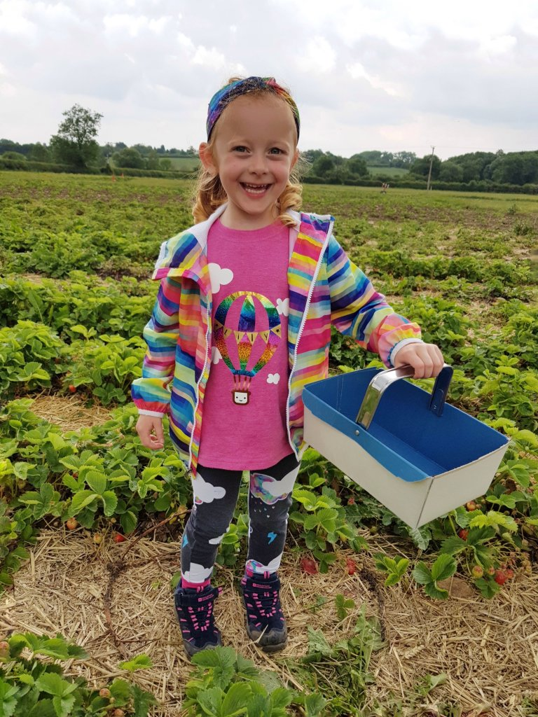 Strawberry Picking at Whetstone Pastures Farm - June 2020