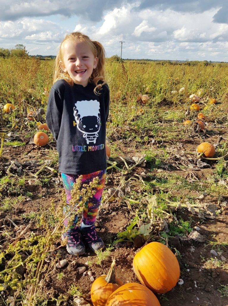 Beautiful views and hundreds of thousands of pumpkins