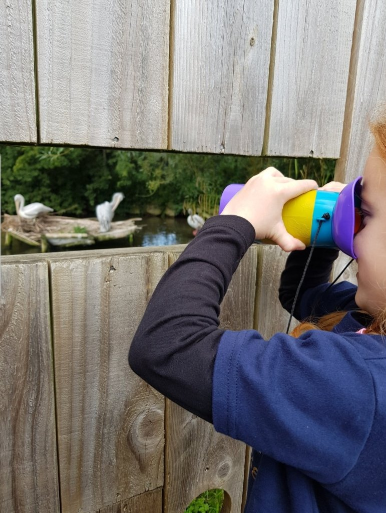 Bird watching at Birdland with her Kidnoculars in 2020