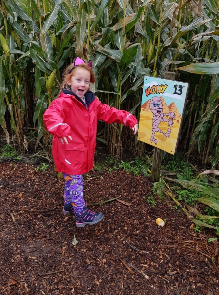 Searching for mummies in the mummy maize maze