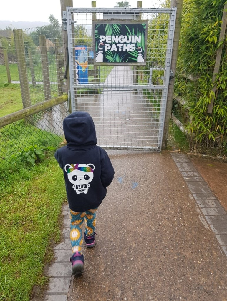 Heading for the Penguin Paths