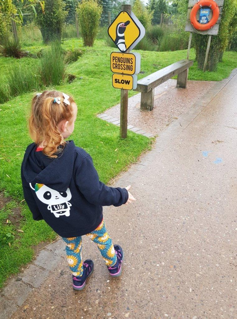 Heading for the Penguin Walk at Peak Wildlife Park