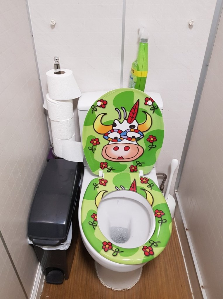 The little cow toilet was definitely Lily's favourite!