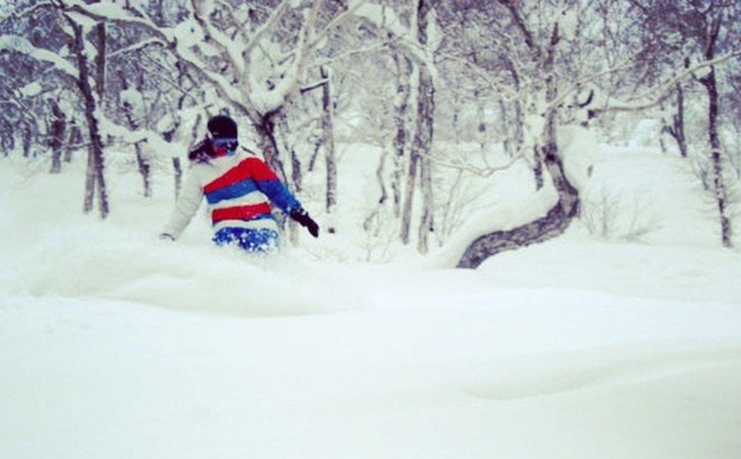 Powder days in Japan - the memories still send tingles down my spine