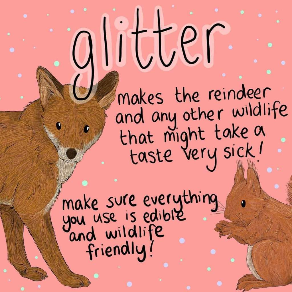 Glitter makes wildlife very poorly - illustration: Button & Squirt