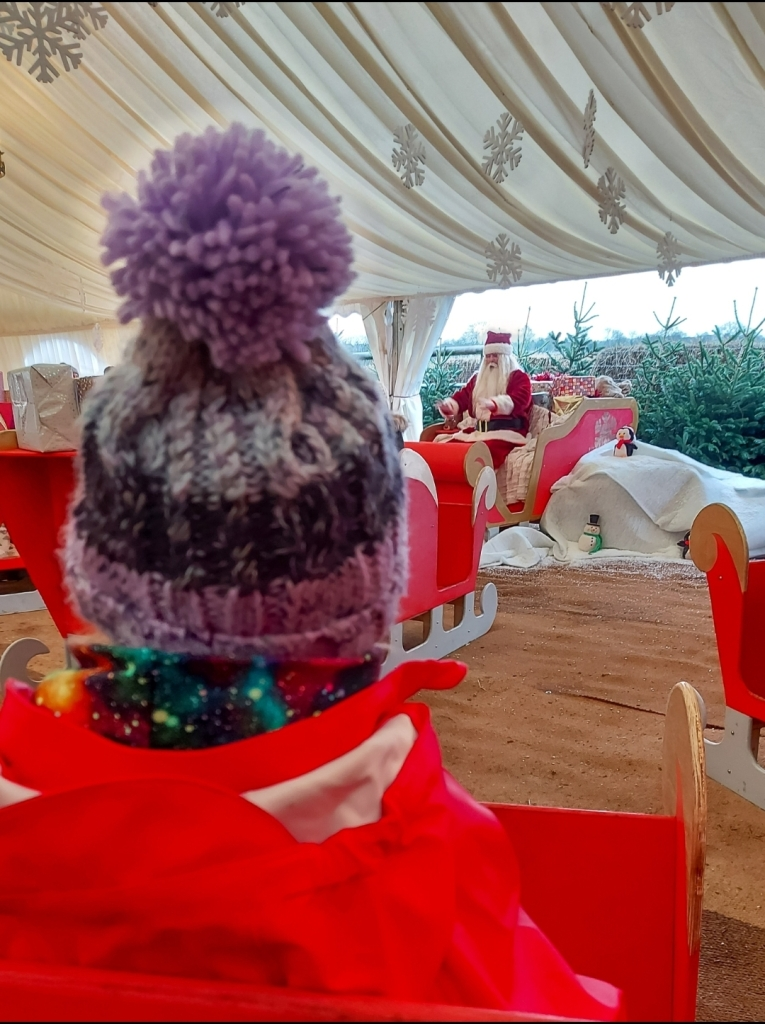 Santa was brilliant and all families were well spread out at Bluebell Dairy Santa's Sleigh School