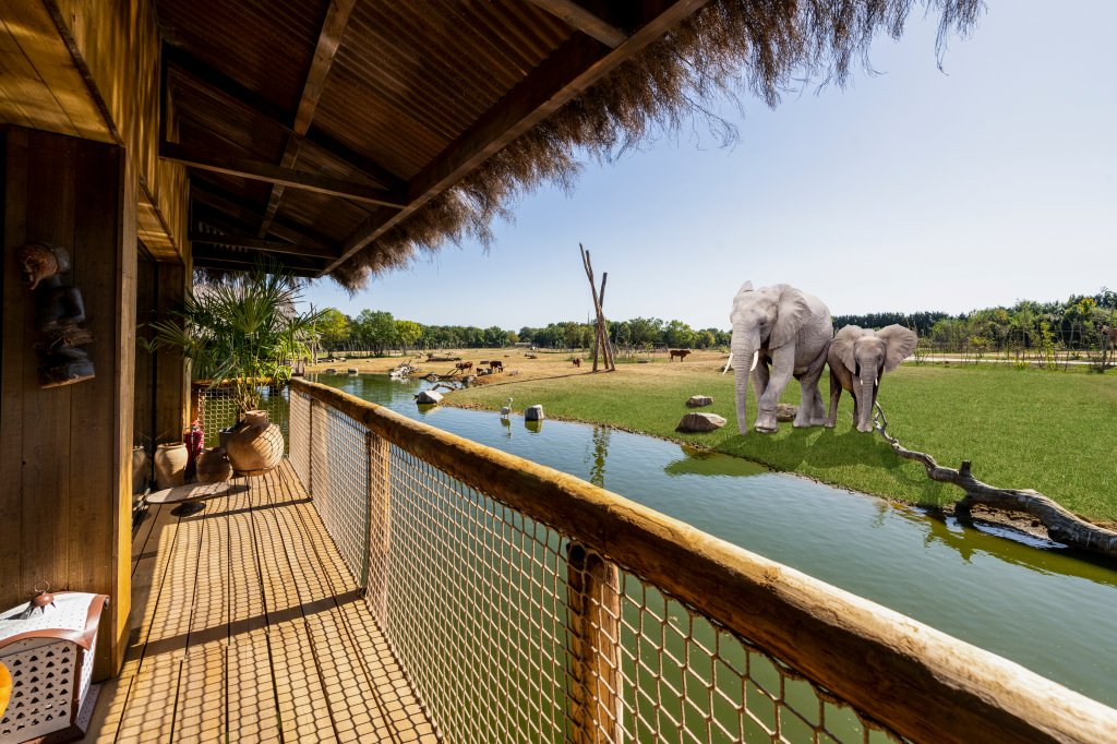 View from the balcony of the elephant lodges (Photo from West Midands Safari Park)