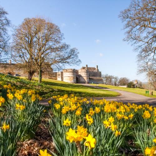 Book your egg hunt at Rockingham Castle