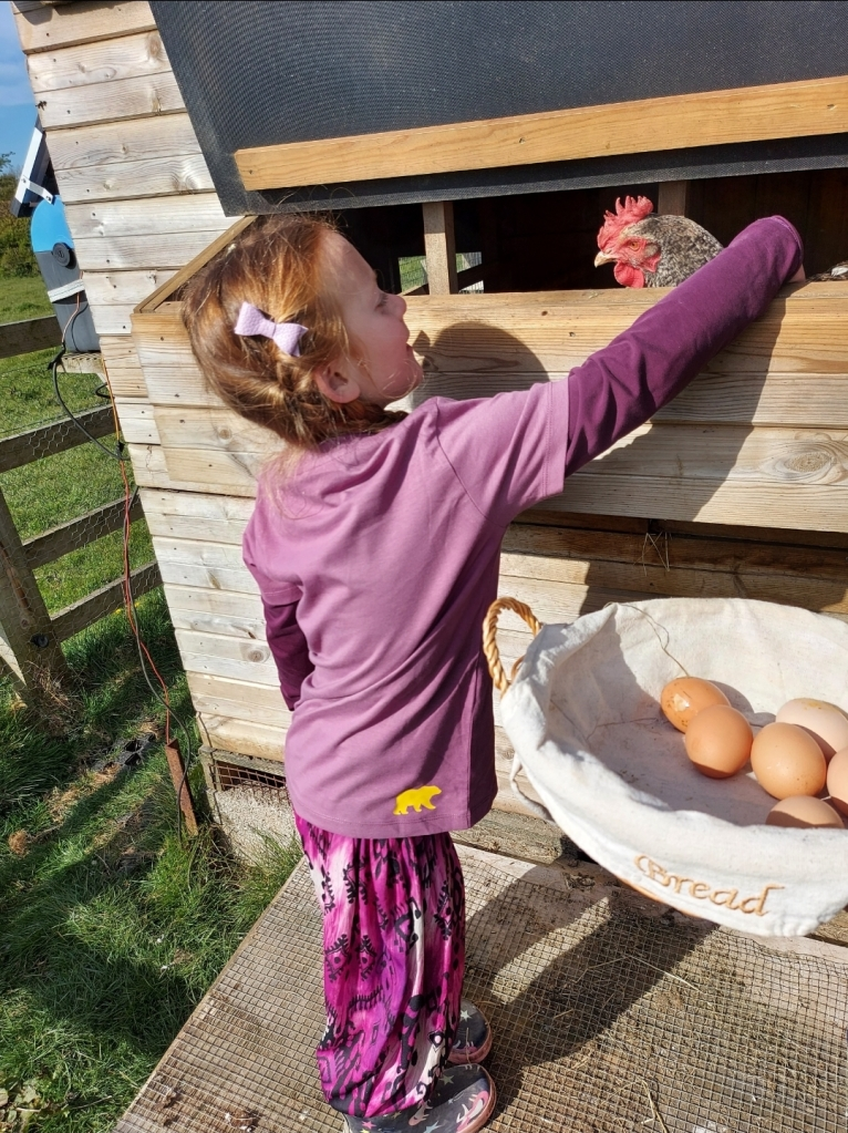 Collecting eggs at Brook Meadow