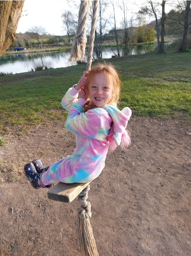 The much-loved tree swing at Brook Meadow