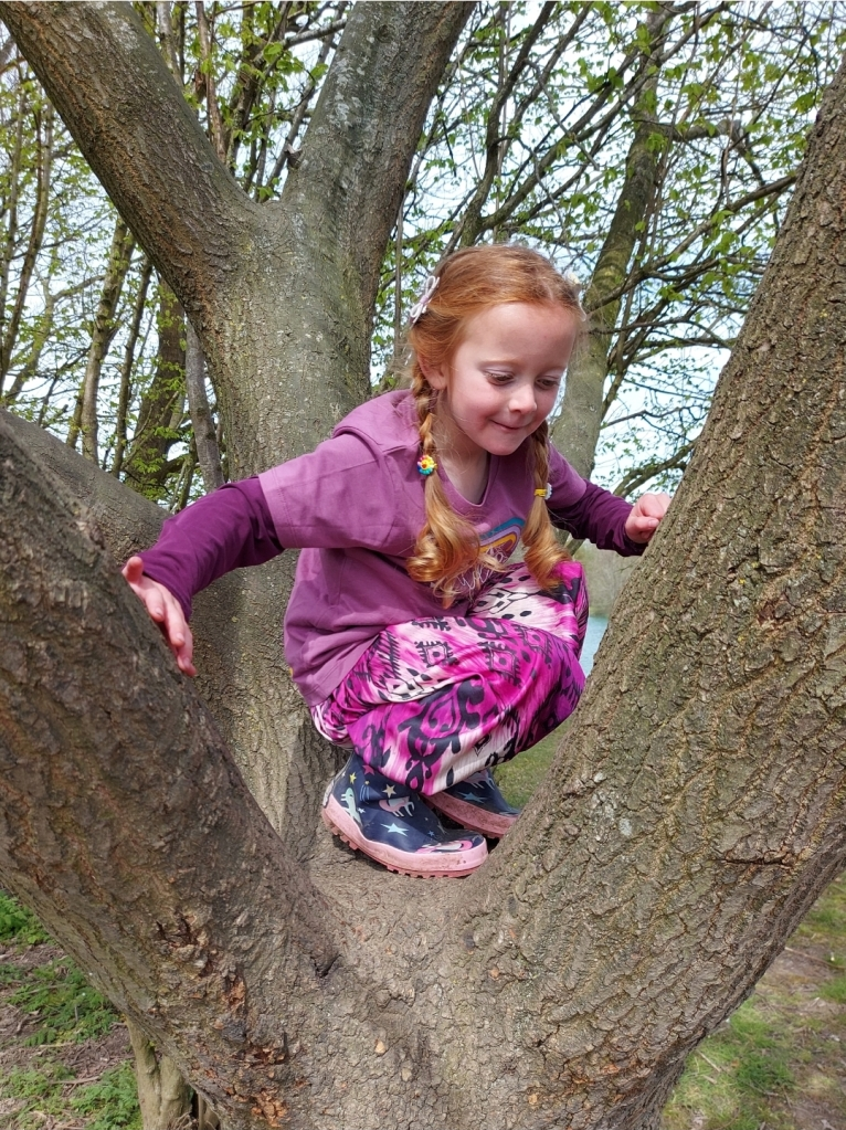 Campsites are a great place to explore nature and hang out in the trees too!