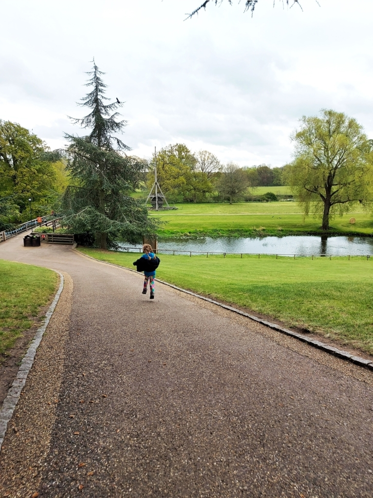 Many of the main paths have tarmac for accessibility around the grounds