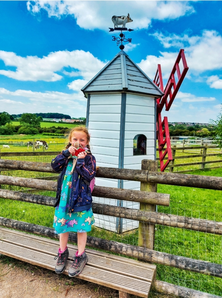 The farm park is set amongst 25acres of countryside
