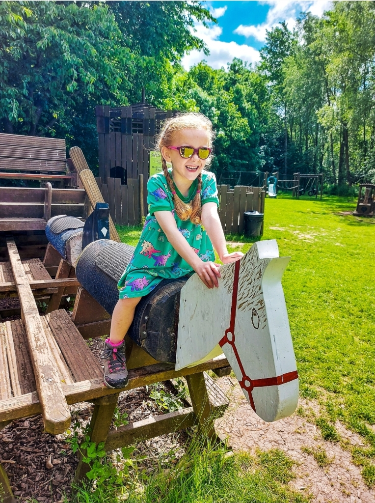 The Fort Adventure Playground in the woodlands has so much for all ages