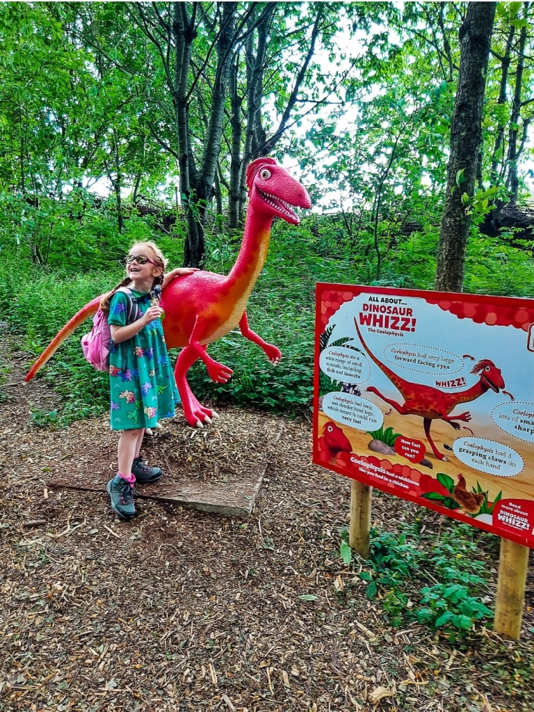 Each dinosaur came with its own amazing facts
