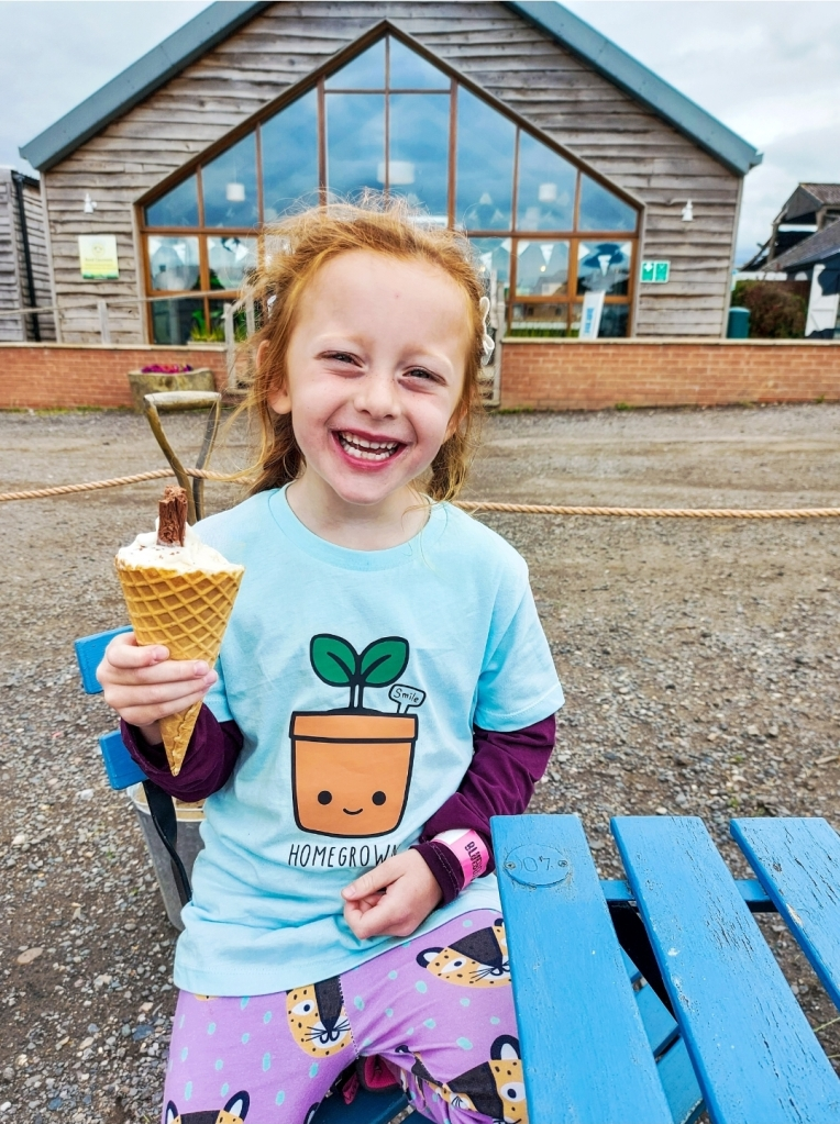 The Bluebell Dairy ice cream is just fantastic