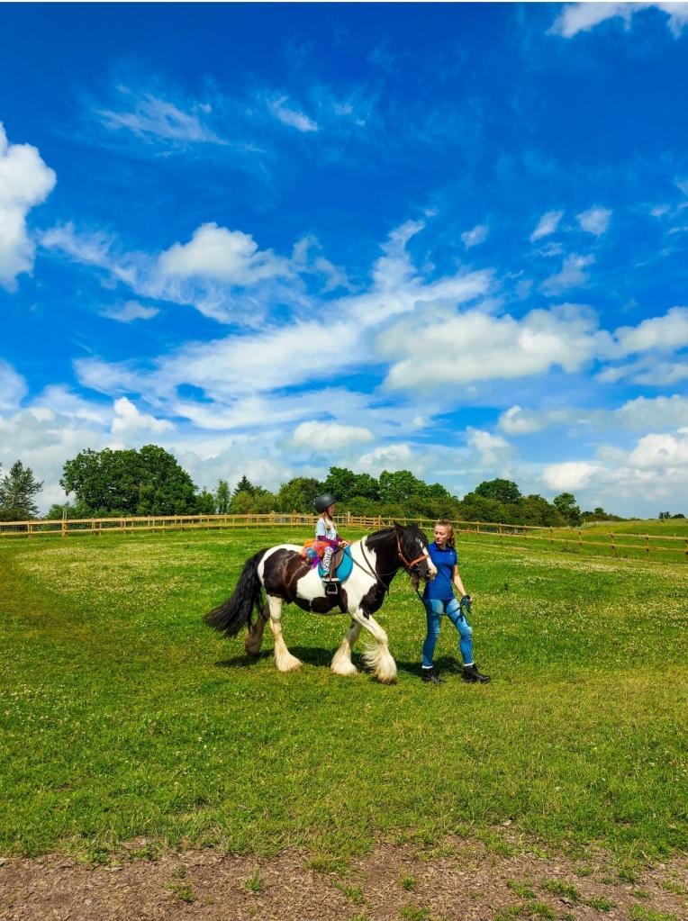 Pony rides at West Lodge Farm Park