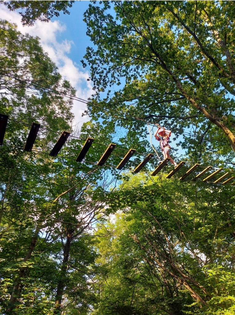 The Treetop Adventure at Go Ape Chessington