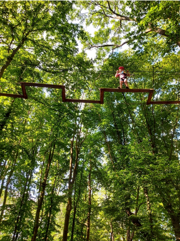 There are all kinds of fun obstacles to tackle at Go Ape Chessington