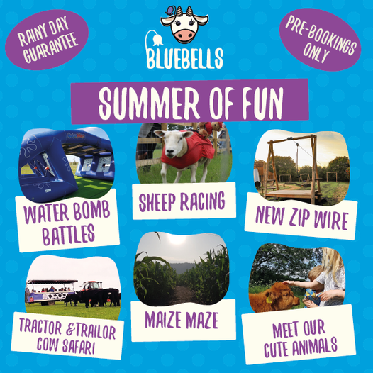 The Summer of Fun at Bluebell Dairy