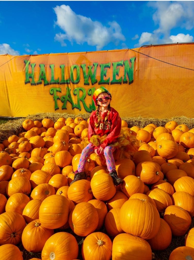 Halloween Farm has plenty of pumpkin fun!