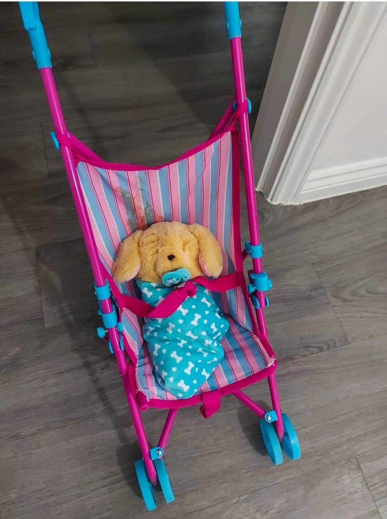 He even gets pushed around like a baby in her dolls pushchair!